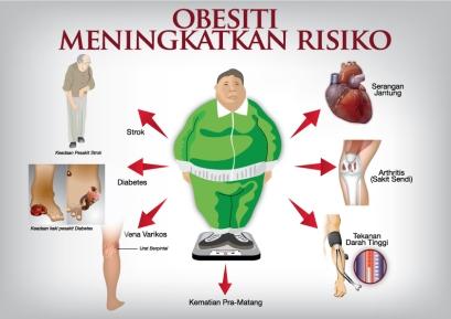 shapeplus obesiti